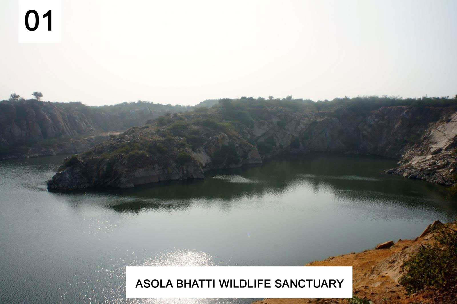 Asola Bhatti Wildlife Sanctuary