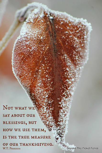 Thanksgiving, blessed, inspirational quote, fall photography, http://bec4-beyondthepicketfence.blogspot.com/2015/11/happy-thanksgiving.html