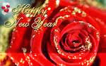 http://brimhome.blogspot.com/2013/12/new-year-resolutions-new-years-eve-new.html