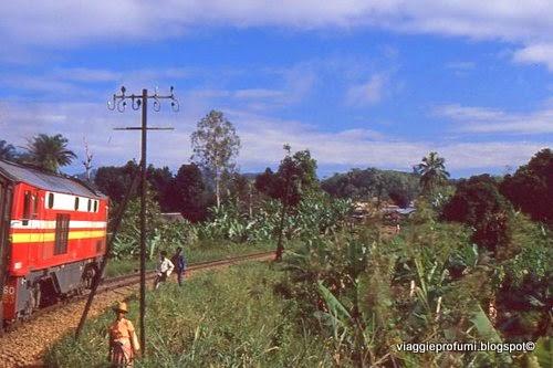 Foto dal treno in corsa, in Madagascar
