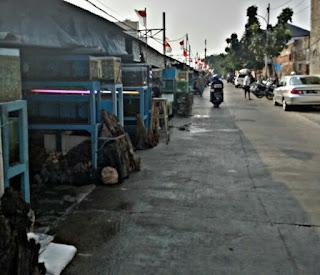 Pasar Ikan Hias Jakarta Kartini