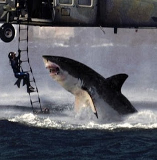 Foto tiburon blanco atacando helicoptero 49d6663c22a