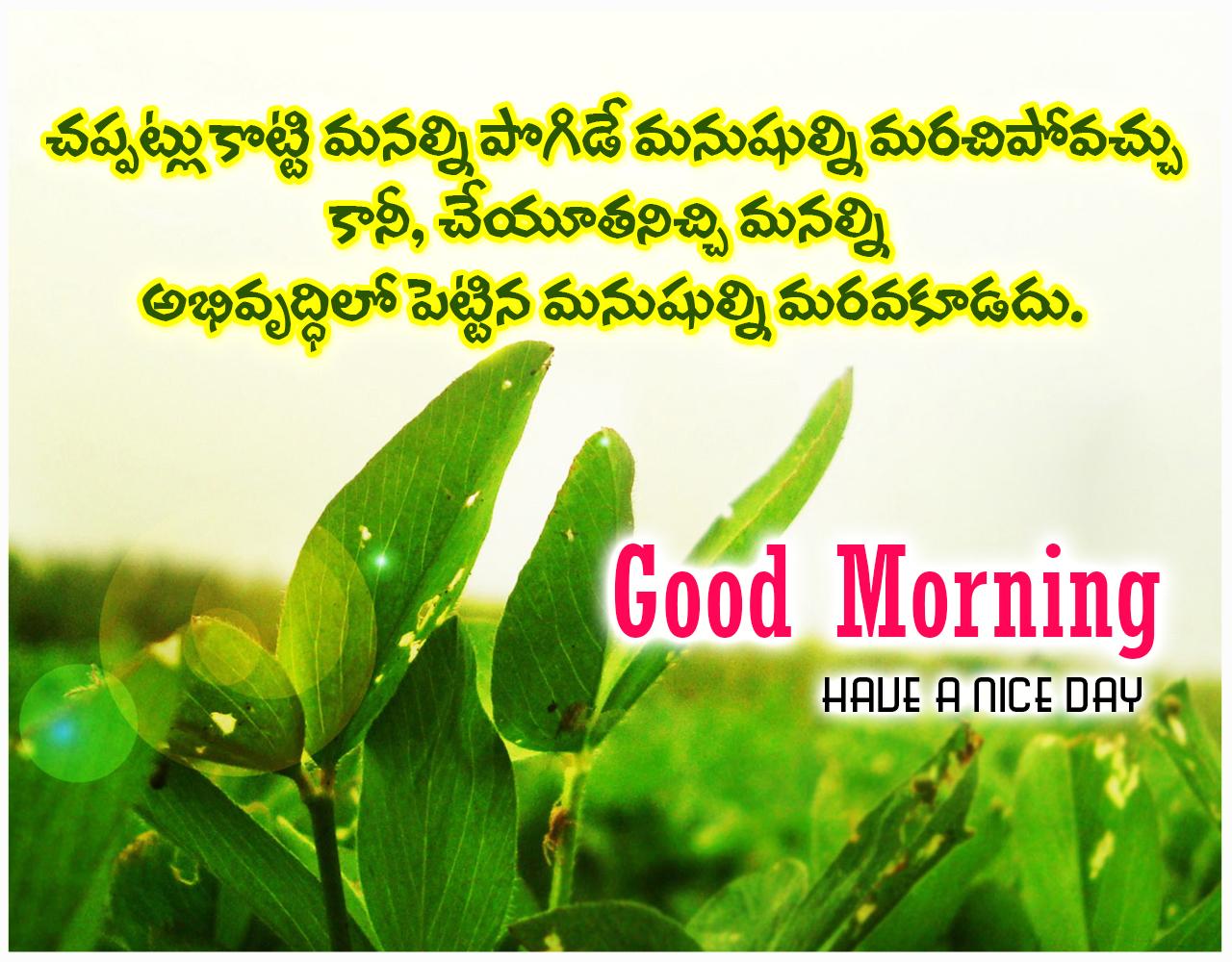 Good Morning Life Quotes In Telugu Archidev