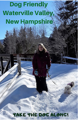 Waterville Valley resort is a great ski resort and Summer destination. And it's dog friendly!  Pet friendly vacations, Dog friendly getaway, Pets, Dogs