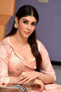 Aditi Singh Stills at Guppedantha Prema Movie Audio Launch ~ Celebs Next