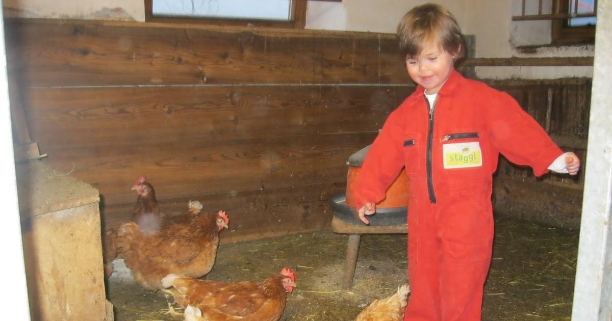 Kinderbauernhof Ierzerhof im PitztalTirol  Bauernhof