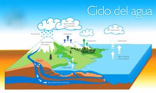 O ciclo da auga