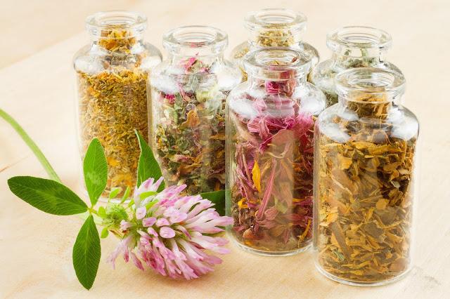 Resep Tradisional Mengatasi Penyakit Kutu Air