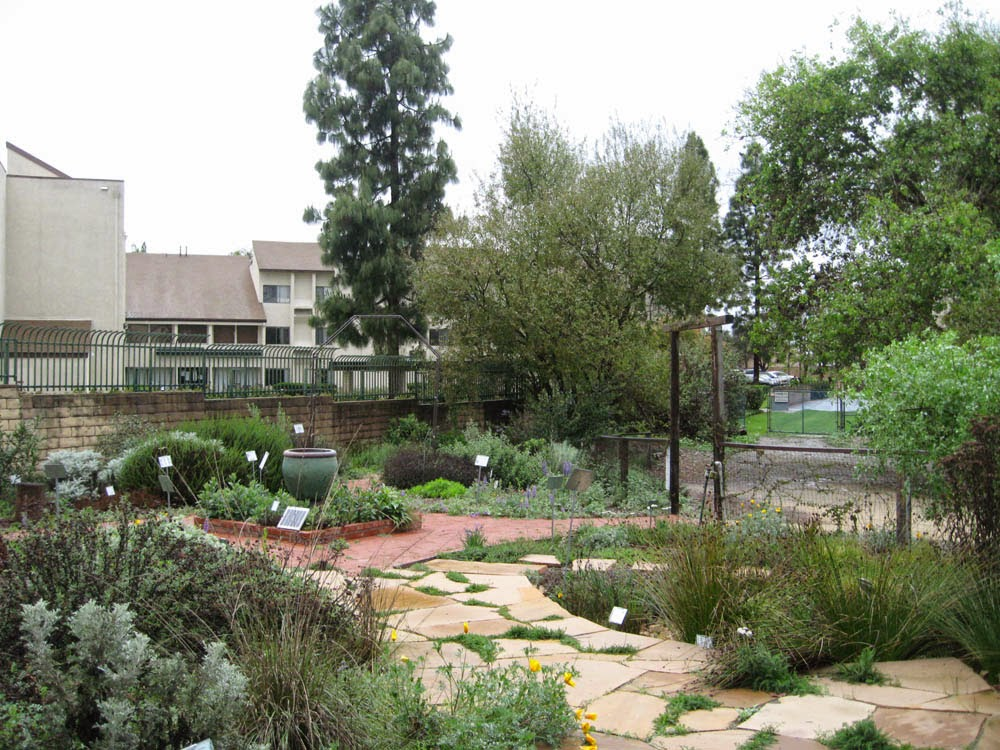 Mother Nature S Backyard A Water Wise Garden Seasons In A