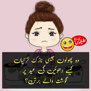 Funny Jokes in Urdu