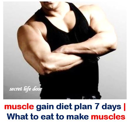 muscle gain diet plan 7 days | What to eat to make muscles- secret life dose