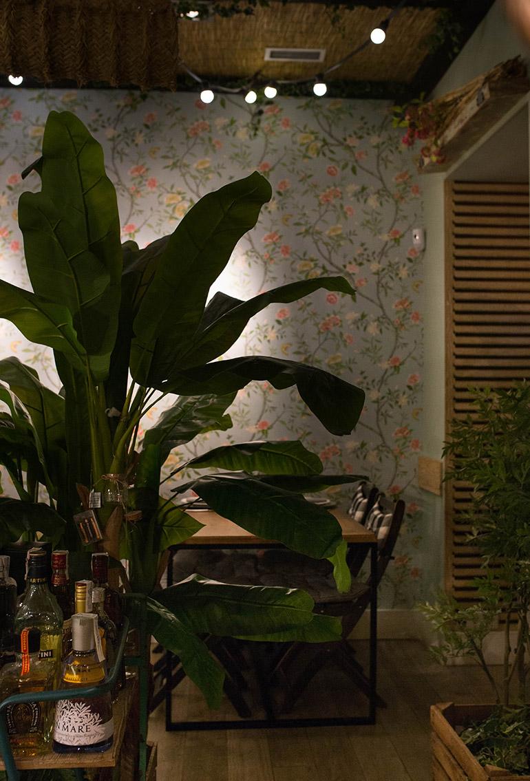 donde-monica-madrid-plantas