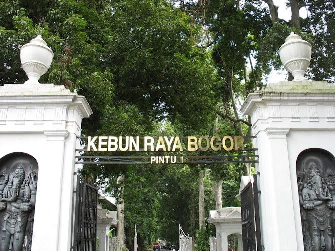 Berwisata di Bogor dan Menikmati Bermalam di Zest Hotel