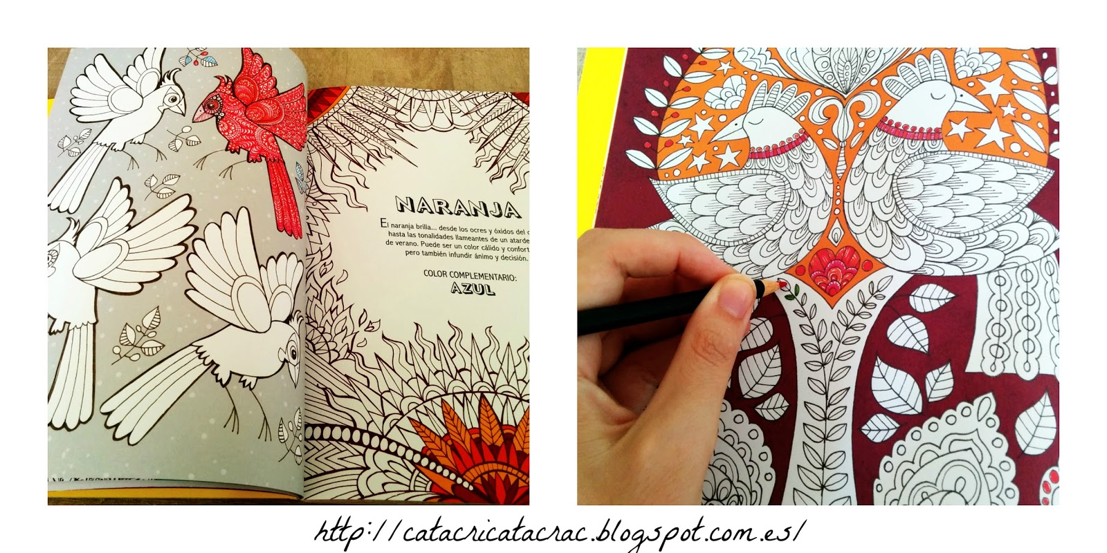 Llenamos de colores CatracricatacraC : Colorarte terapia. Un libro ...