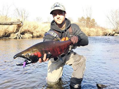 http://www.flyfishingmadness.com/wisconsin-coho-dry-fly/