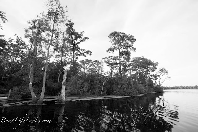 Pasqoutank River, NC