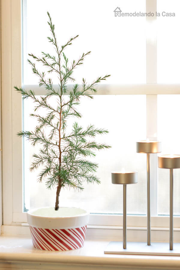 Little Christmas tree on kitchen window sill decor