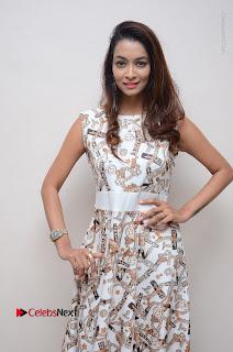 Telugu Actress Reshmi Thakur in Long Dress at Plus One ( 1) Audio Launch  0016.jpg