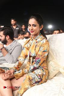 Actress Rakul Preet Singh Stills in Short Dress at Dhruva Pre Release Function  0112.JPG