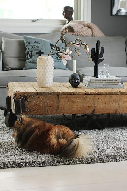 annelies design, webbutik, webbutiker, webshop, nätbutik, inredning, dekoration, inspiration, vardagsrum, koordinater, bosse, pomeranian, hund, hundar, kaktus, kaktusar, vas, bubbles, magnolia,