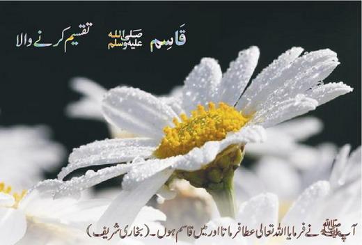 Faisal 3d Name Wallpaper 99 Name Of Muhammad In Urdu 3d Wallpaper Nature