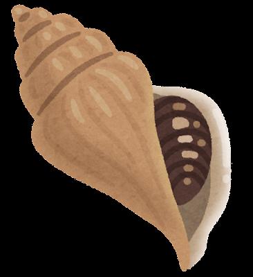 つぶ貝のイラスト