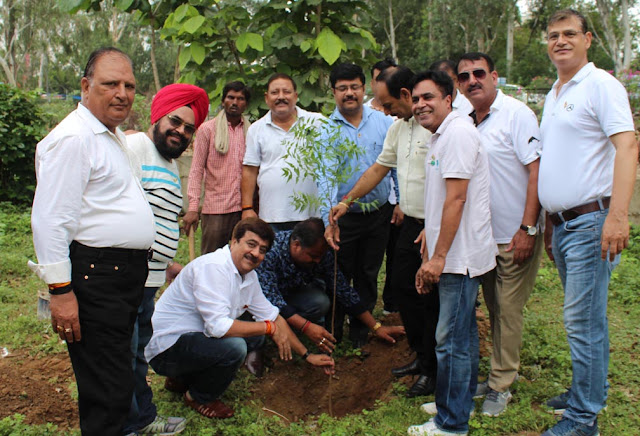 Rotary Club Lake City Faridabad did planting, taken resolution of environmental protection