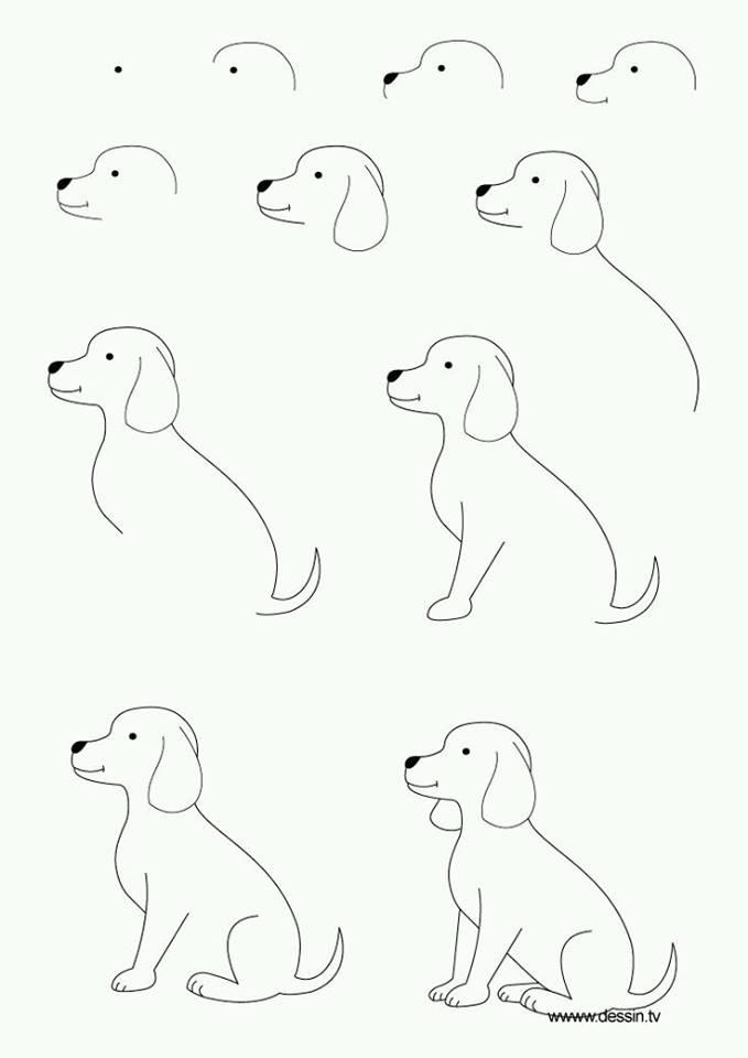 55+ Gambar Animasi Gampang Paling Hist