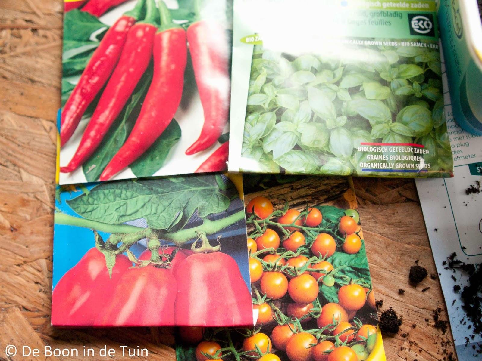 voorzaaien moestuin maart volkstuin tomaten paprika