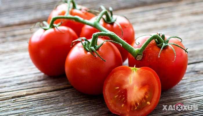 Cara menyembuhkan dan mengobati sariawan dengan tomat
