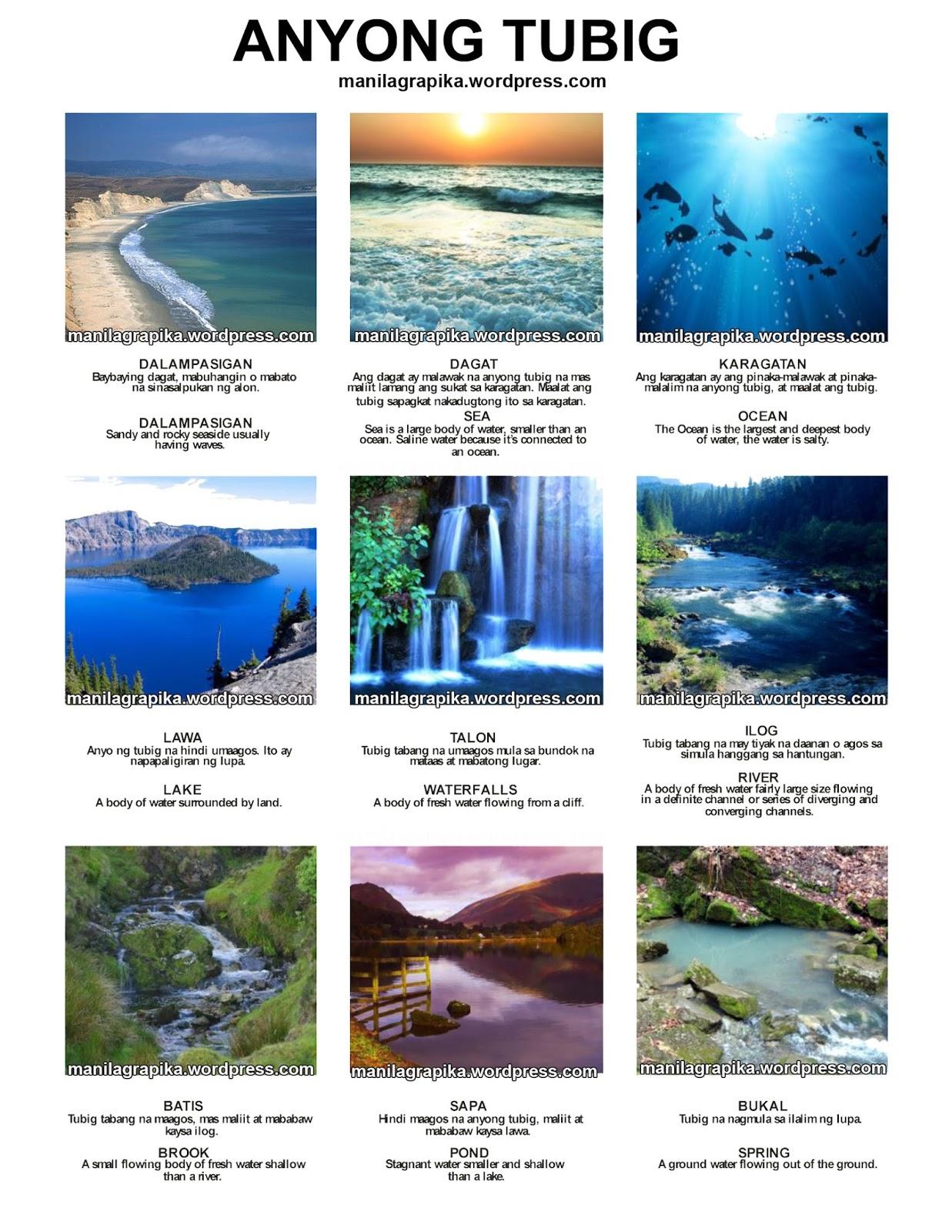medium resolution of Lupa Tubig Worksheet   Printable Worksheets and Activities for Teachers