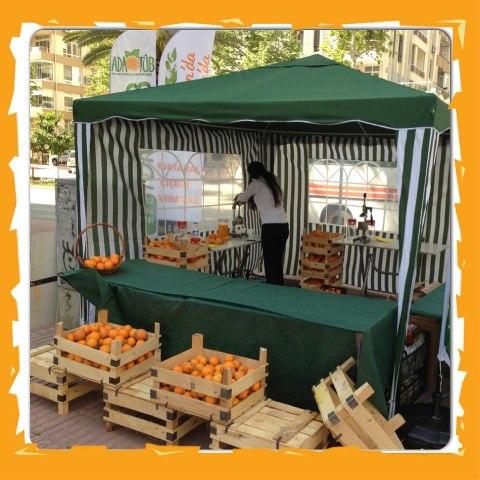 Baharda portakal kokan şehir: Adana 50
