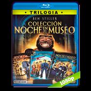 Trilogía Una Noche en el Museo (2006-2014) Full HD 1080p Audio Dual Latino-Ingles
