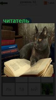 1100 слов кошка лежит на книге, читатель 32 уровень