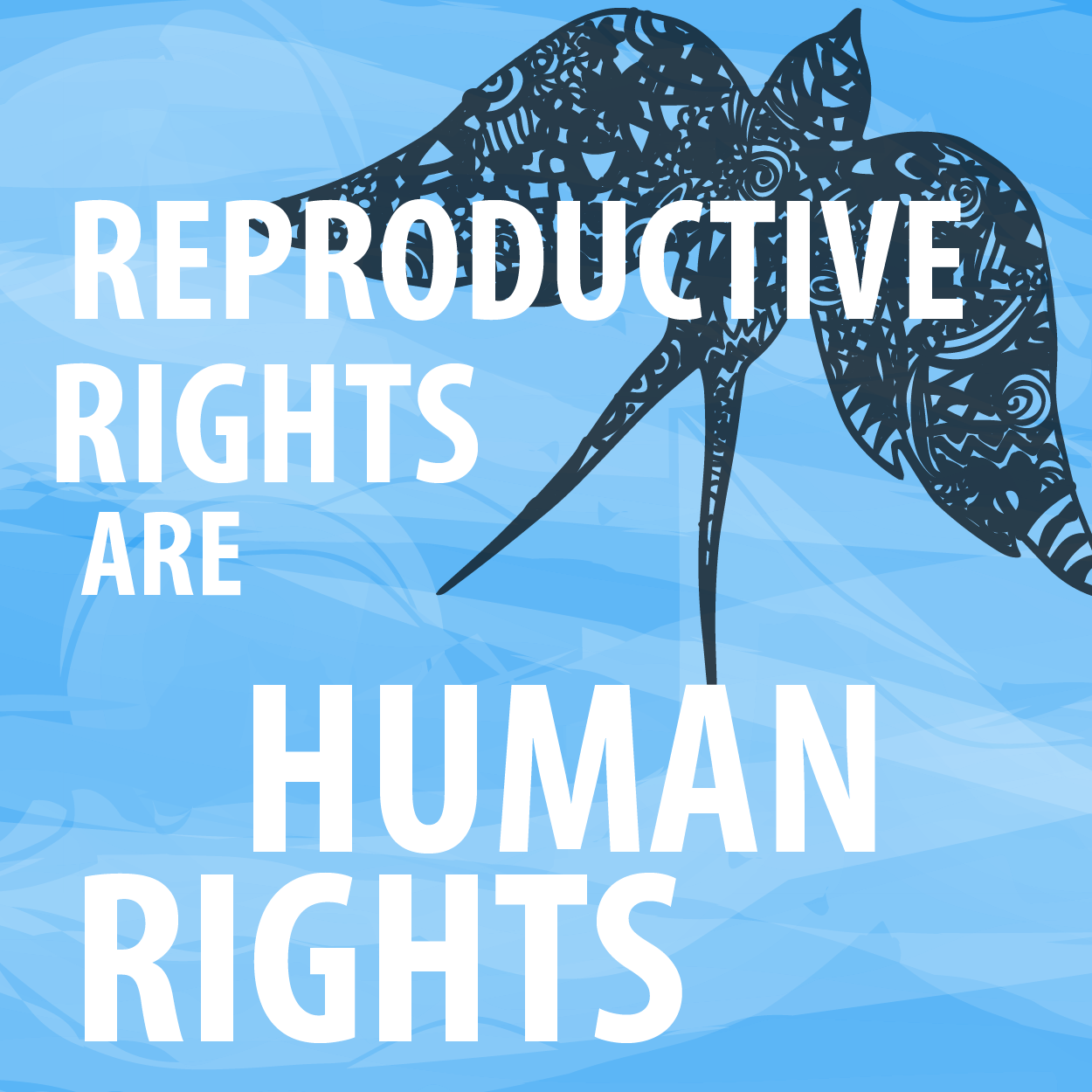 Sexual And Reproductive Rights Of Women 7