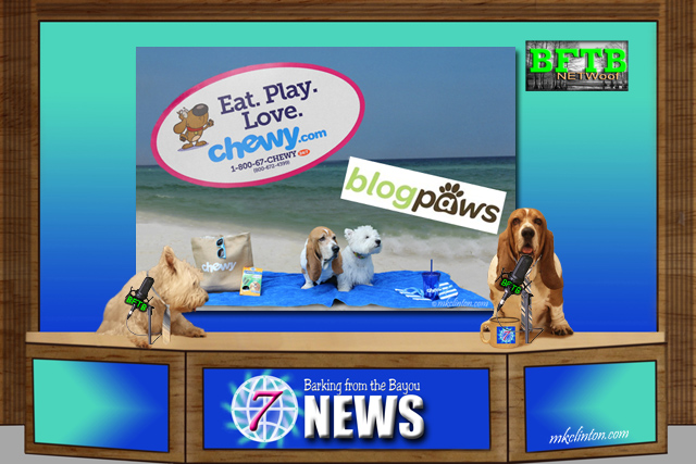BFTB NETWoof News dogs report on Chewy.com + BlogPaws