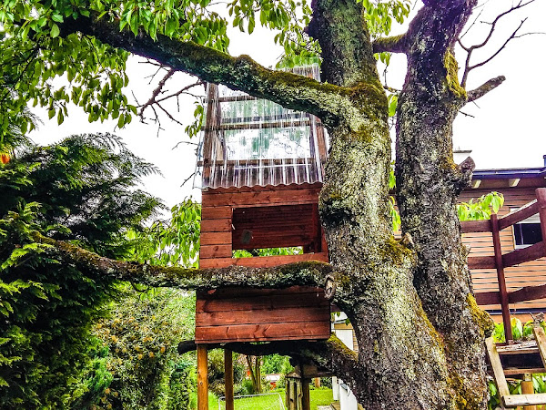 A Treehouse Could Be The Perfect DIY Project