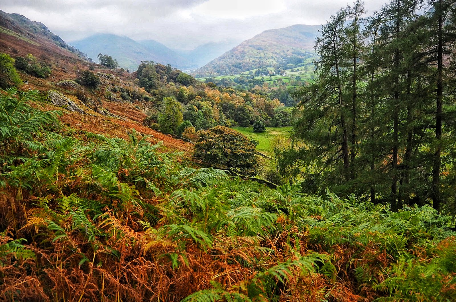 Beautiful autumnal colours viewed from atop Ullswater Lake District