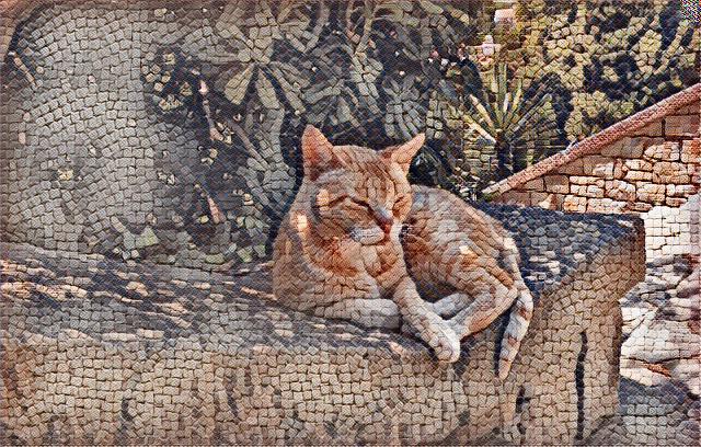Gato bajo la sombra de un árbol