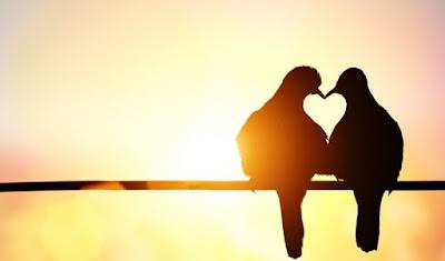 3 Makna Cinta Menurut Al-Qur'an