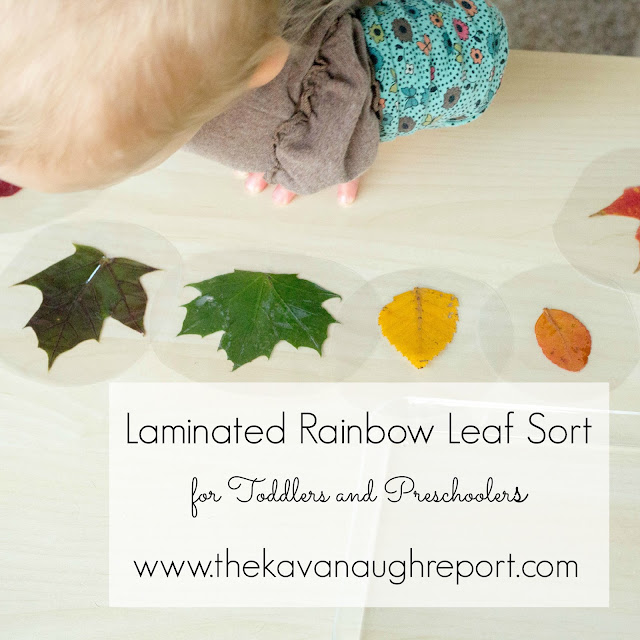Laminate a rainbow of leaves for a fun fall themed Montessori inspired work