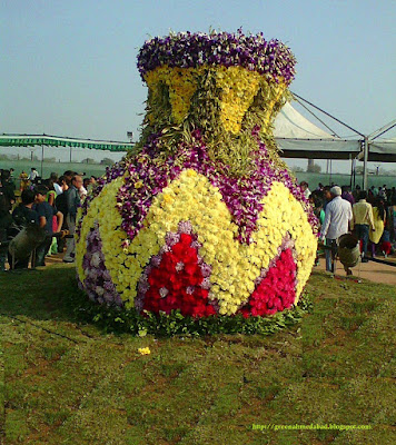 Ahmedabad Flower Show Pictures