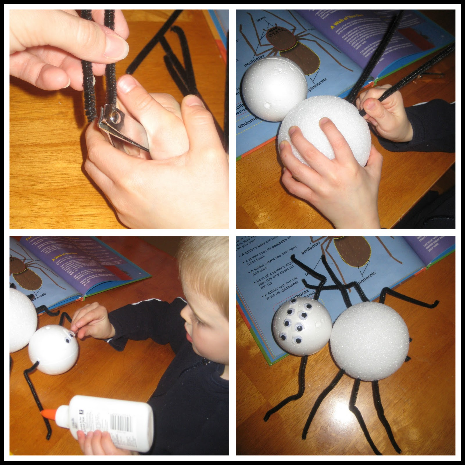 Relentlessly Fun Deceptively Educational Spiders Learn Craft And Write