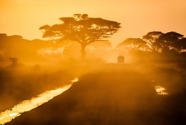 safari-fotografico