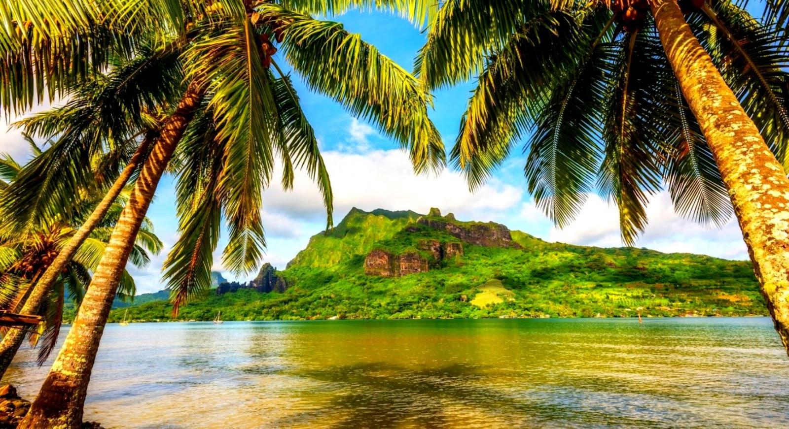 Beautiful Tropical Mountain Wallpaper Hd Wallpapers Land