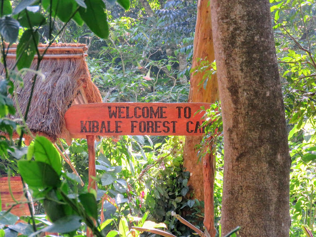 Kibale Forest Camp sign in Uganda