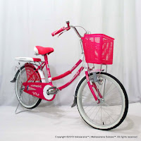 City Bike Evergreen R1 Butterfly 20 Inci