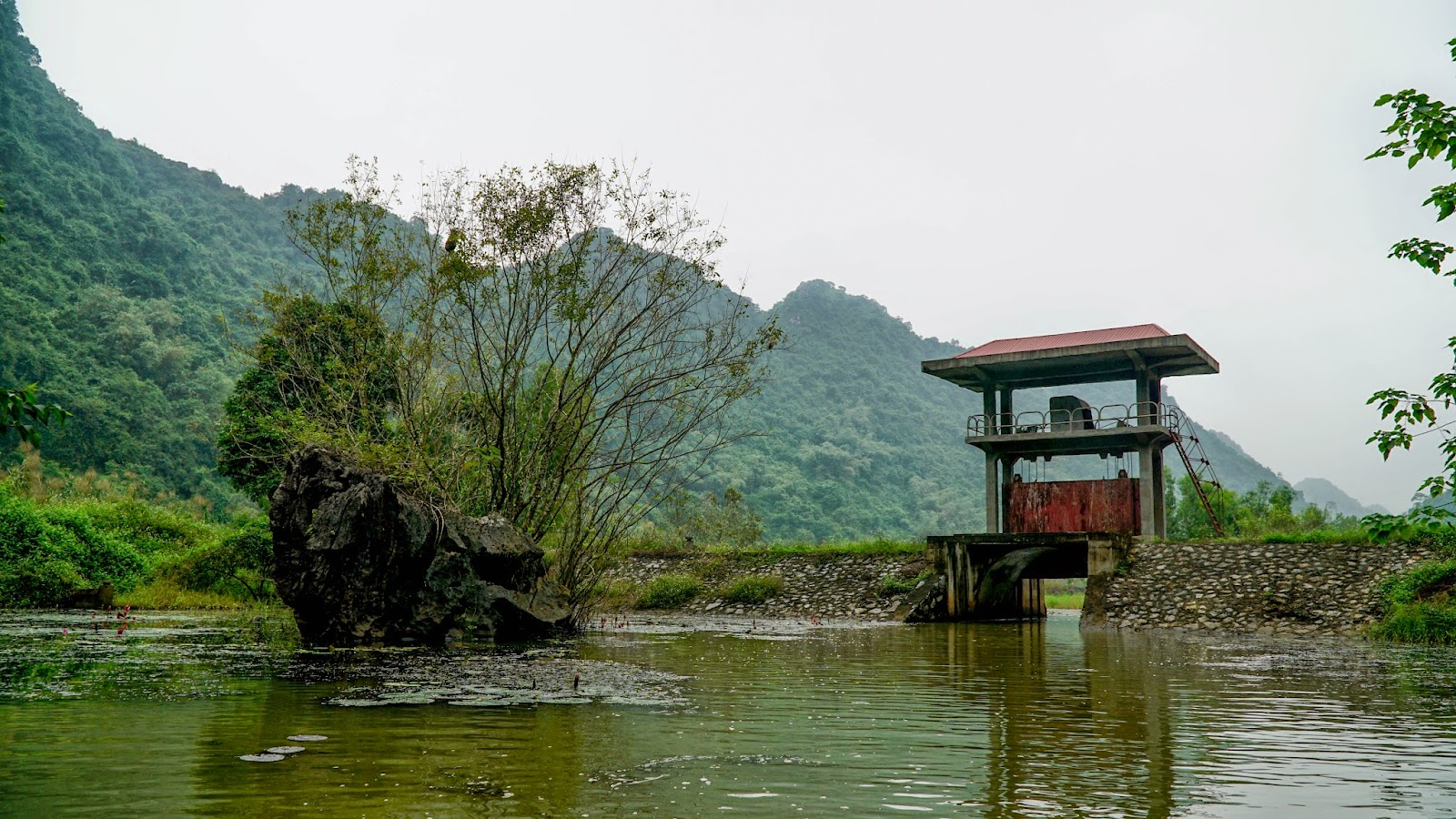 Van Long nature reserve near Tam Coc