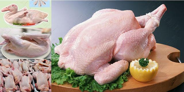 Máy vặt lông đa năng gà vịt chó thỏ các kích cỡ, siêu giảm giá trước tết!