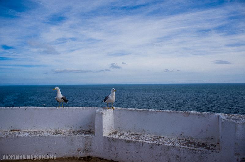 algarve, portugalia, plaza, wakacje, zdjecia